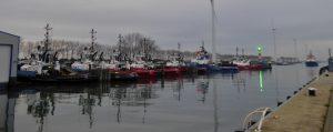 Scheurhaven