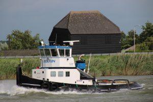 Dolfijn op de Hollandsche IJssel