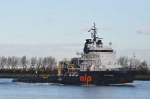 Alp Guard, Sterna & Patrijs