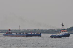 Odissey transport Ark-12