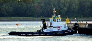 SEA BULLDOG, ARCTURUS, DUTCH PIONEER en BROEDERTROUW 4