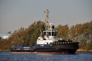 Vanmiddag gespot in IJmuiden