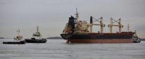 """MULTRATUG(s) met """" dood schip """" NEW GLORY naar Antwerpen"""