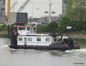 ADELAAR op de Oude Maas
