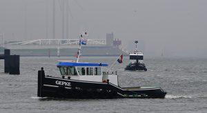 WALVIS , GEPKE , GEPKE III & BALOE in de Berghaven 20-5-2019.