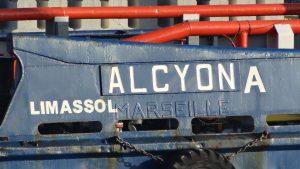 ALCYONA